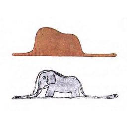 어린왕자 | 보아뱀속의 코끼리