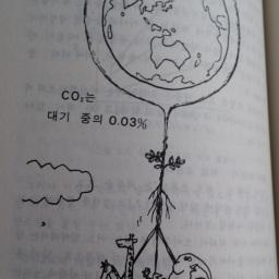 광합성의 세계 | 지구의 생명유지 징치