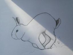 겨울토끼는 흰토끼 | 옥신각신 모녀 색깔론