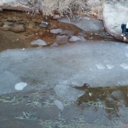 고드름 사냥에서 고래 사냥까지 | 얼음나라