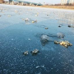 얼음나라  | 공릉천 겨울풍경
