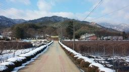 학부모로 복학한 시골학교   작은 학교가 아름답다
