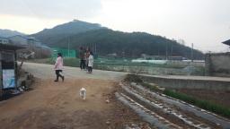 아이들에겐 놀이가 밥이다! | 시골집 풍경