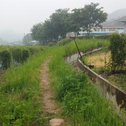 단비 내리는 아침 | 시골집 풍경