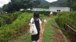 학교 가는 길 | 동네한바퀴