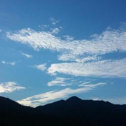 가을이 넘치는 여름 아침 | 아침 풍경