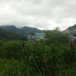 마당밭 배추모 심기 | 씨앗꽃 아침 풍경