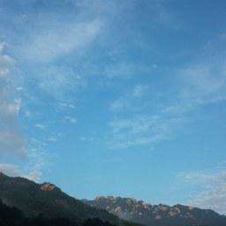 아침 마당밭 지혜 | 아침 풍경
