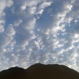 구름 버섯 가득한 하늘 | 아침 풍경