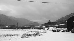 흰 눈이 하얗게 | 시골집 풍경