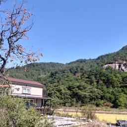 가을 햇살 '호사'를 누리다 | 동네 심부름