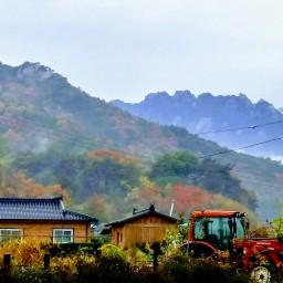 가을아침풍경 | 내유천지(內有天地)