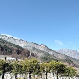 꽃샘추위의 흔적이 선명한 봄날 아침 | 봄눈 풍경