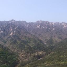 오월 신록 | 견훤산성 산행산책길